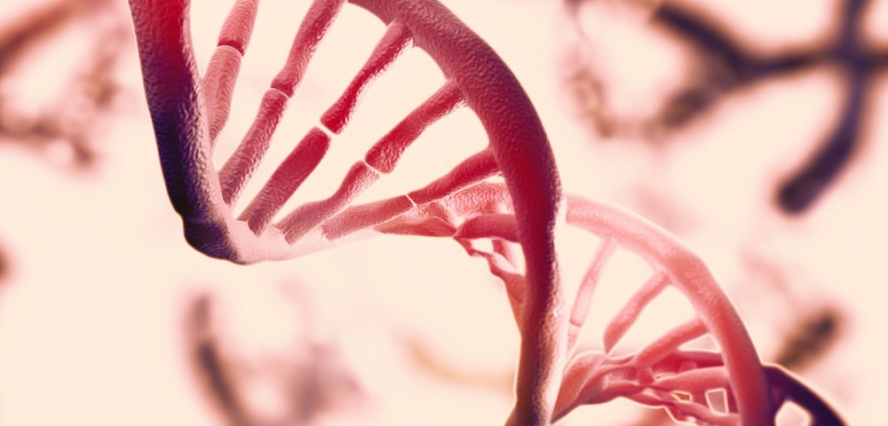 New Gene Mutation in Alport Syndrome Identified in Chinese Family