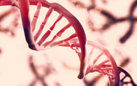 Gene Therapy Repairs Mutations in Kidney Cells from Alport Patients, Study Shows