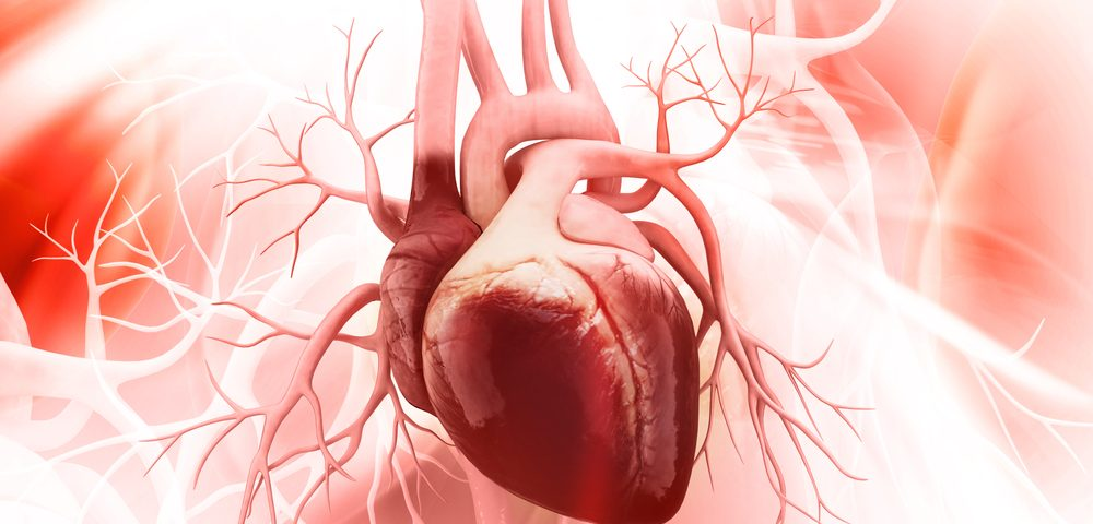 Collagen Deficit May Have Caused Rupture of Coronary Artery in Alport Patient, Researchers Say