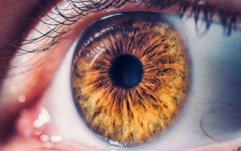 Eye Deformity Common in Alport Best Captured Using Optical Coherence Tomography, Case Report Finds
